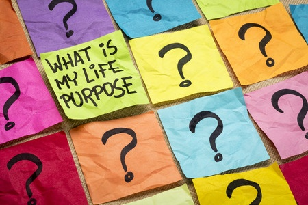 what's your life purpose